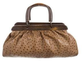 Gucci Ostrich Wood Frame Bag - BROWN - STYLE