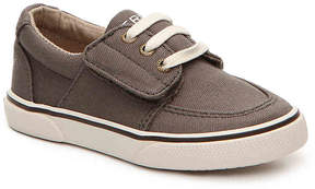 Sperry Boys Ollie Toddler Sneaker