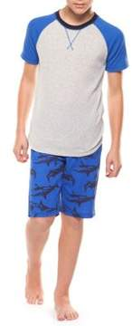 Dex Boy's Two-Piece Tee and Graphic Shorts Set