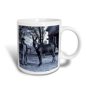 1901 3dRose Man and a Mule in Milwaukee Cyan, Ceramic Mug, 11-ounce