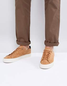 Tommy Hilfiger Dino Suede Sneakers in Tan