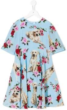 Dolce & Gabbana dog print floral dress