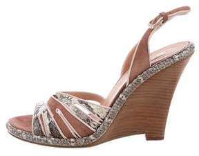 Nina Ricci Snakeskin & Suede Wedge Sandals