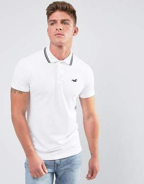 Hollister Polo Tipped Pique Icon Logo Slim Fit in White