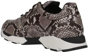 Philipp Plein Bryan Sneakers