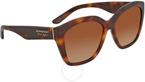 Burberry Brown Gradient Square Sunglasses