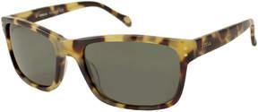 Asstd National Brand Fossil Suns Sunglasses - Russell / Frame: Light Tortoise Lens: Polarized Green