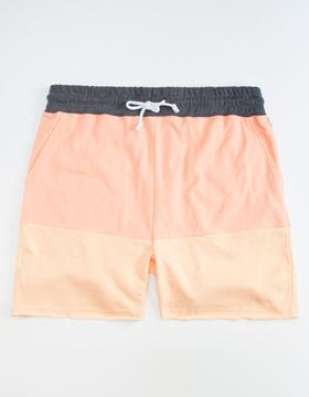 Neff Bummin Mens Sweat Shorts