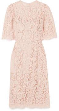 Dolce & Gabbana Corded Lace Midi Dress - Blush