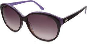 Lacoste Sunglasses - L748S / Frame: Havana-PurpleLens: Purple Gradient