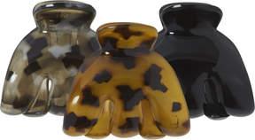 Riviera Tortoise Mini Claws