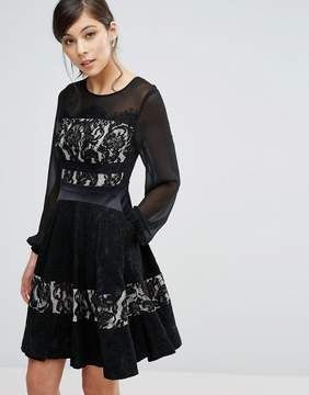 Coast Delphina Lace Paneled Skater Dress