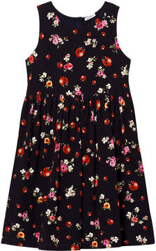 Dolce & Gabbana Navy Lady Bird Print Sleeveless Dress