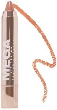FOREVER 21 Mega Lip Crayon
