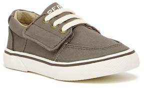 Sperry Ollie Sneaker (Toddler)