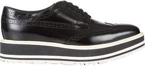 Prada Women's Wingtip Brogue Platform Sneakers