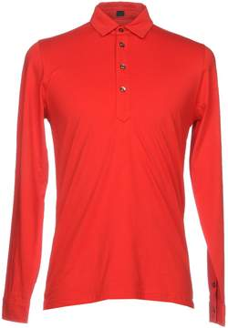 Piombo MP MASSIMO Polo shirts