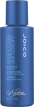Joico Travel Size Moisture Recovery Shampoo