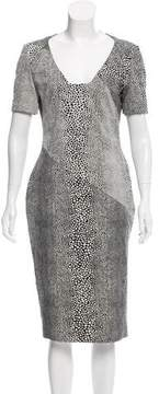 Antonio Berardi Printed Midi Dress