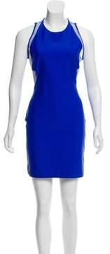 Dion Lee Mesh Paneled Bodycon Dress