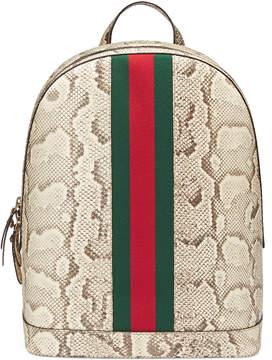 Gucci Web Animalier python backpack