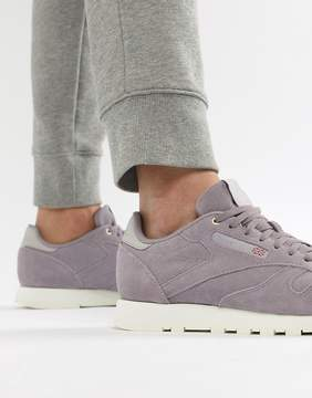 Reebok Classic Leather Montana Cans Sneakers In Purple CM9606