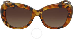 Versace Brown Gradient Butterfly Sunglasses