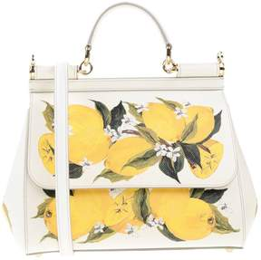 Dolce & Gabbana Handbags - IVORY - STYLE