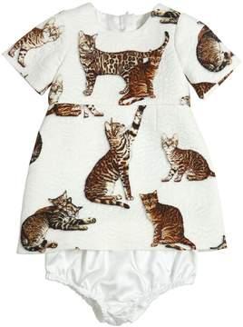 Dolce & Gabbana Zambia Cat Brocade Dress & Diaper Cover
