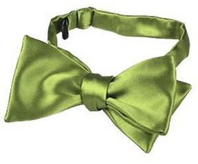 Forzieri Light Green Solid Silk Self-tie Bowtie