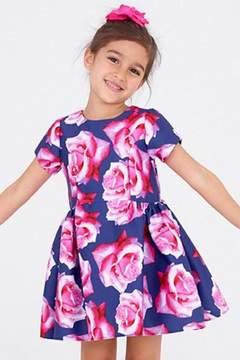 Halabaloo Fuchsia Roses Dress