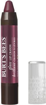 Burt's Bees Gloss Lip Crayon