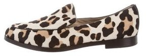 Michael Kors Leopard Print Ponyhair Loafers