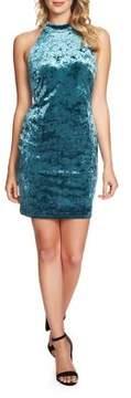 Cynthia Steffe Velvet Bodycon Dress