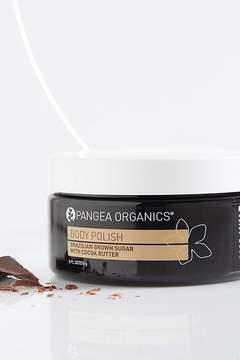 Body Polish by Pangea Organics at Free People