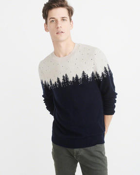Abercrombie & Fitch Graphic Crew Sweater