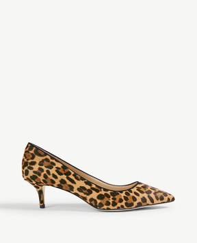 Ann Taylor Reese Leopard Print Haircalf Pumps
