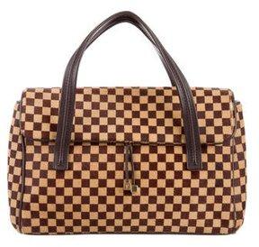 Louis Vuitton Damier Sauvage Gazelle Bag