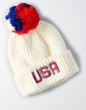 American Eagle Outfitters AE USA Rib Knit Pom Pom Beanie