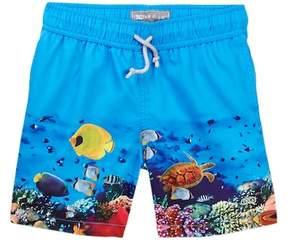 Trunks Le Club Aquarium Swim Baby, Toddler, Little Boys, & Big Boys)