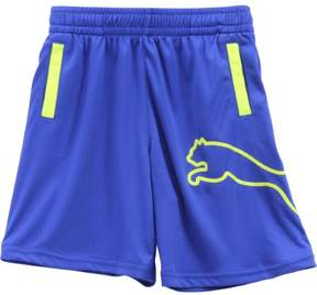 Puma Little Boy's Outline Logo Royal Blue Elastic Waist Gym Shorts