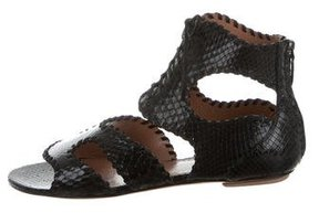 Alaia Python Lace-Up Sandals