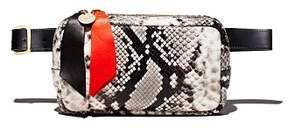 Clare Vivier Python Belt Bag