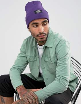 Dickies Yonkers Beanie in Purple