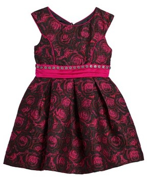 Iris & Ivy Toddler Girl's Floral Jacquard Dress