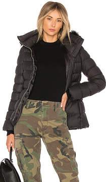 ADD Fur Border Jacket With Raccoon Fur