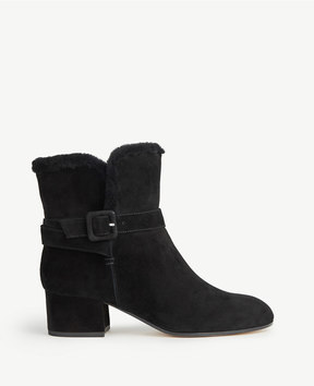 Ann Taylor Sidney Shearling Buckle Booties