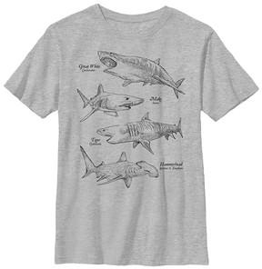Fifth Sun Athletic Heather Shark Encyclopedia Crewneck Tee - Boys