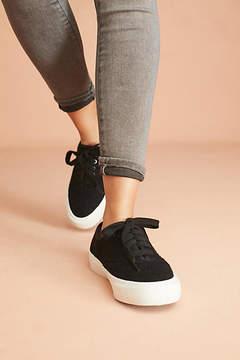 SeaVees Boucle Legend Wintertide Sneakers