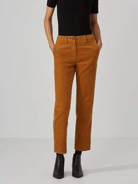 Frank and Oak Cropped Corduroy Pant in Cathay Spice